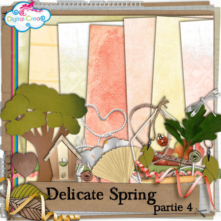 preview_delicatespring_partie4