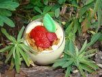 verrines_fraise