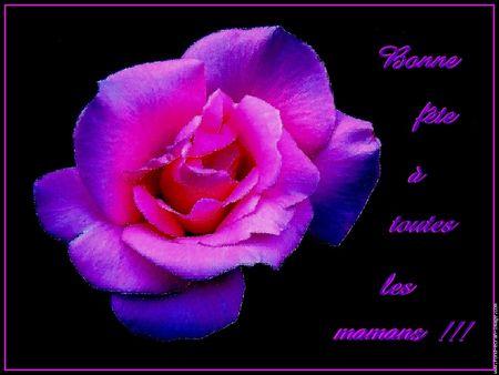 galerie_membre_fete_des_meres_bonne_fete_maman
