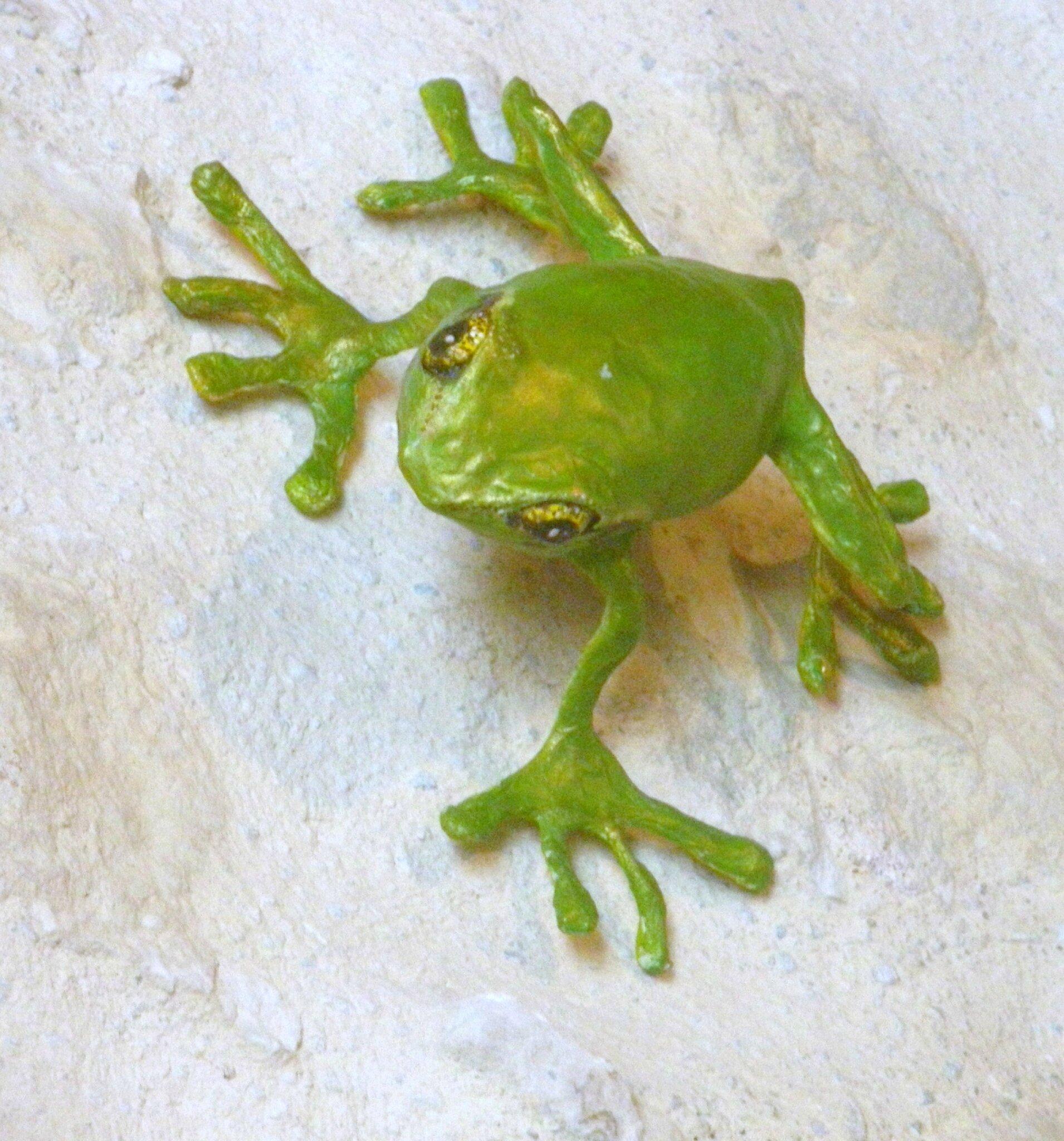 grenouille verte (vendue)