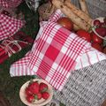 table picnic 065