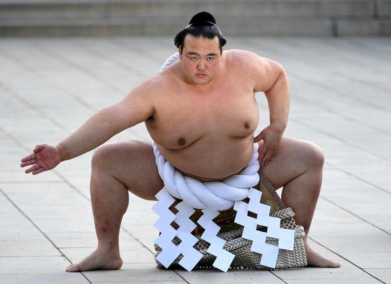 988365-sumo