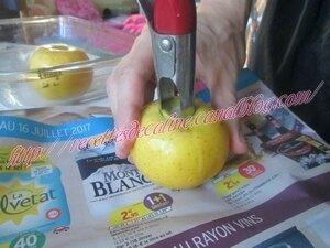 Brochettes de dinde et pommes grillées à la sauce sésame09