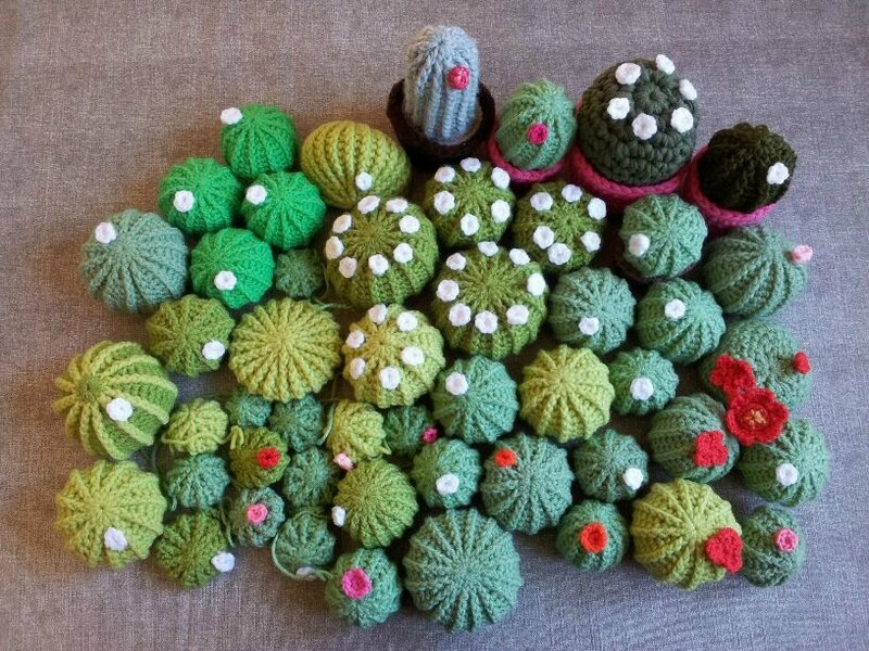 collection cactus 2