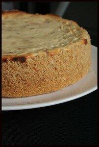 cheesecake_sal__2