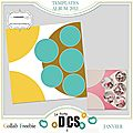Album templates 2013 -dcs