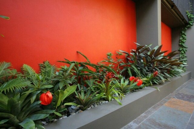 décoration-jardin-mur-orange-plantes