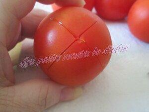 pâtes aux tomates fraîche et citron02