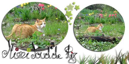 nounou_dans_le_jardin