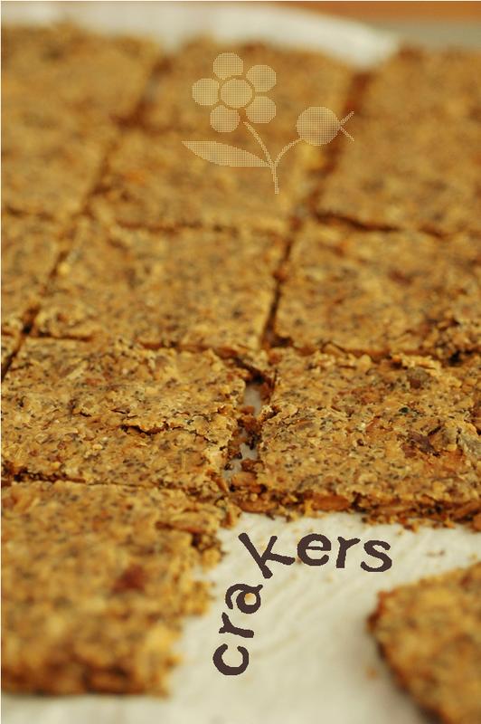 Crackers aux noix & graines_2