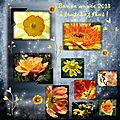 Voeux pour 2013, spécial fleurs !