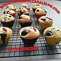 Muffins super moelleux aux fruits rouges 087