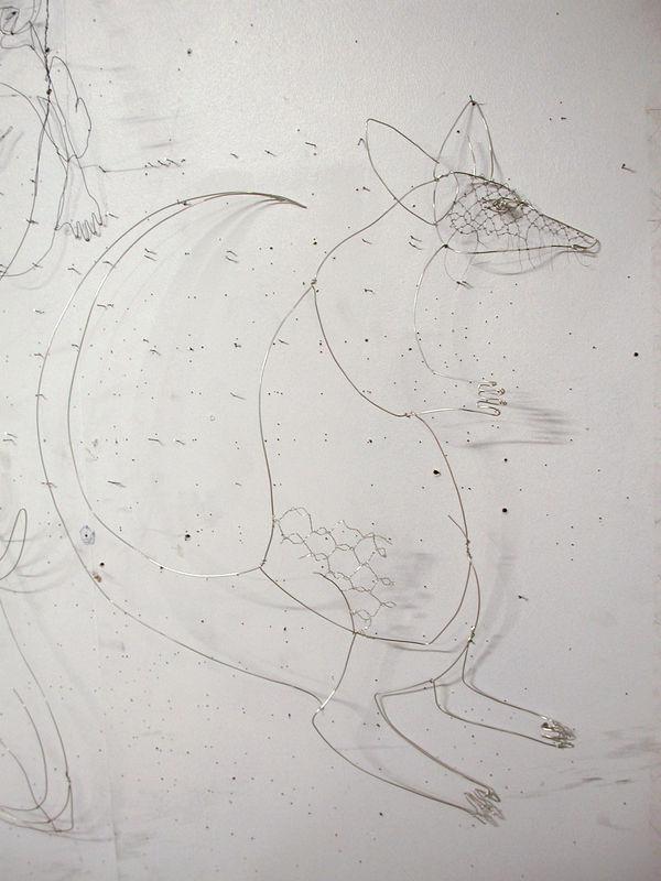 kangouroumars08
