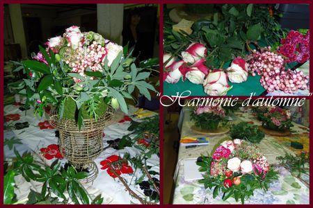2011-Harmonie d'automne1