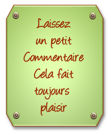 617785commentaire