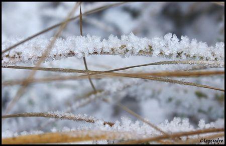 brin_de_glace
