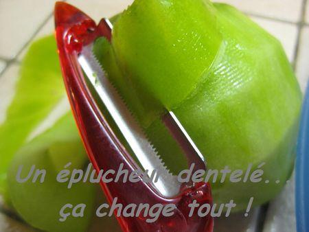 Chutney_de_tomates_vertes__plucheur