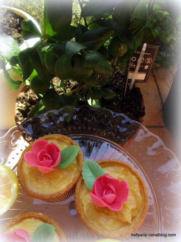 tartelettes citron- hellyane passion (7)