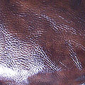 Leather-Texture-4 cuir marron brillant