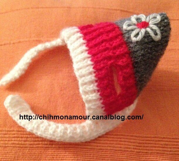 tricoter un vetement pour chien