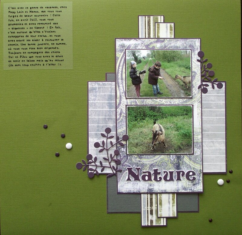 3 page nature