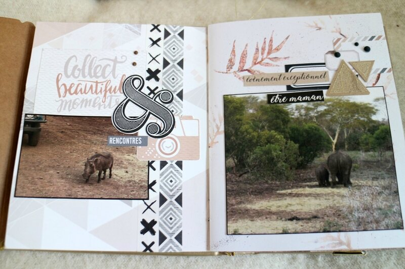 Mini safari (18b)