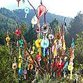 arbre aux soleils yurtao