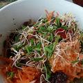 Salade fraîcheur bis
