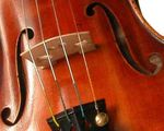 violon_09