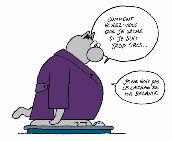 Gros chat tu connais la derni re - Dessin chat rigolo ...