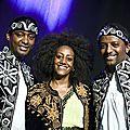 Krar collective au festival des nuits d'afrique