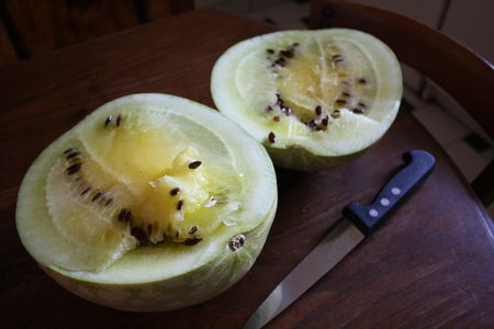 Melon_03