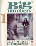 bignumberscover