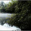 L'étang du bran parsemé de brouillard.
