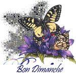 bon_dimanche_3
