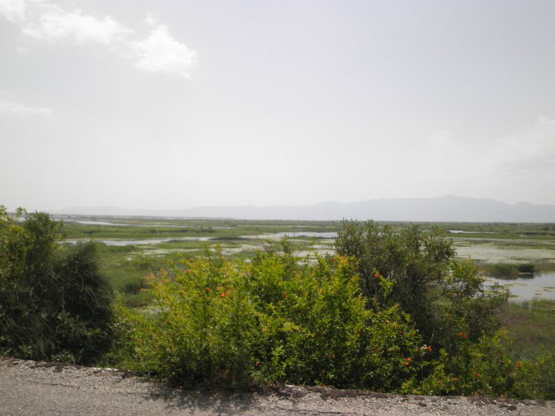 MNE - paysage