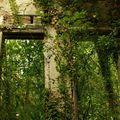 Maison abandonnée 3