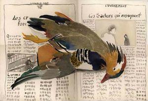 mail mandarin nov 2001