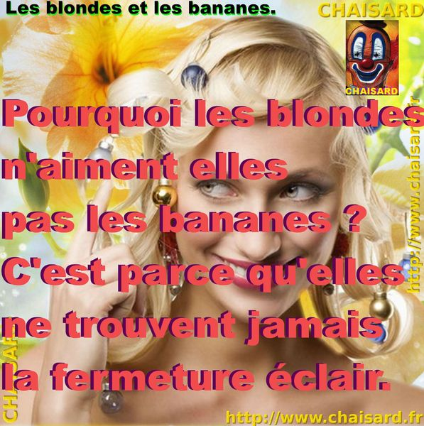 _ 0 CHAISARD BLONDE 010