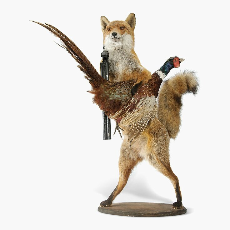 An English taxidermy group of a fox and pheasant, Late 20th century