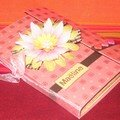 Mini-album 