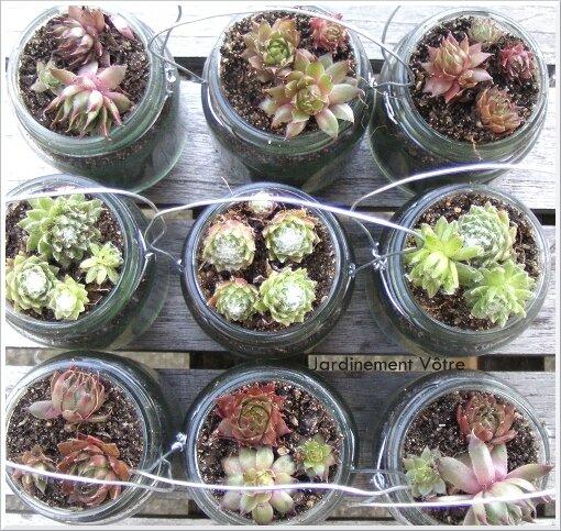 D co tous les messages sur d co page 3 jardinement v tre - Plante dans pot en verre ...
