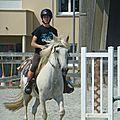 Jeux équestres manchots 2013 (281)