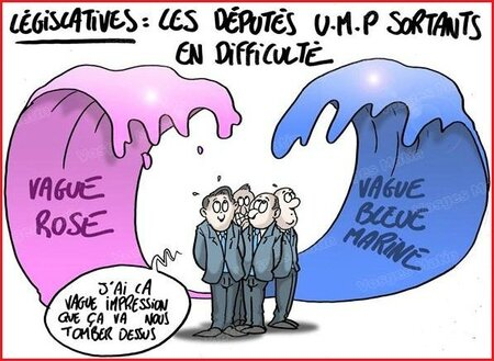 legislatives vague rose vague bleue