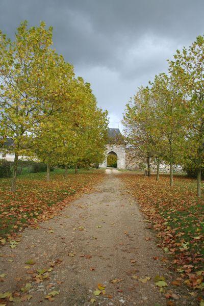 Autry-Cernoy-Saint Brisson 021