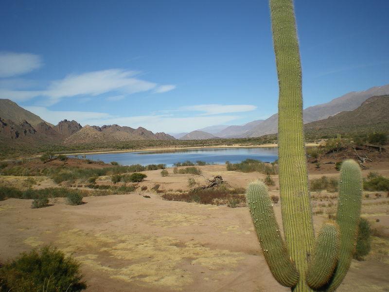 Laguna Brealito