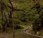 jardin_de_temple__a_1000