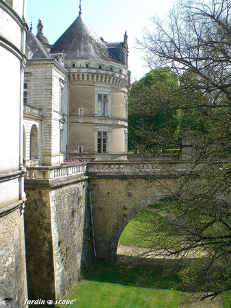 Douves_du_Chateau