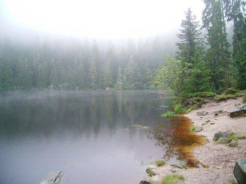 Glaswaldsee - jour blanc, brume