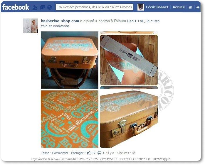 capture FB valise-bus